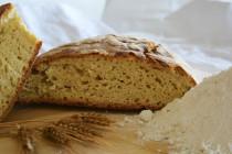 Il pane giallo di Allumiere