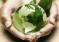 Corso sui sistemi di gestione ambientale: qualita' e management